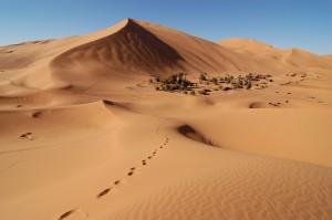 Ifrane, telle une Europe au  Sein du Maroc!