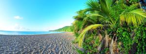 Le patrimoine Martiniquais