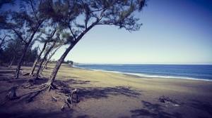 Les vacances dans l'Océan Indien