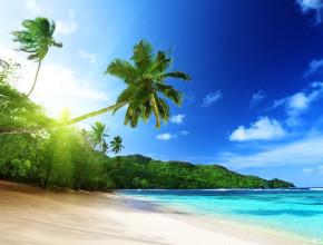 Les plus belles îles du Pacifique à visiter pour un court séjour