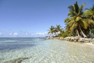 Vacances d'été : les bons plans en Guadeloupe